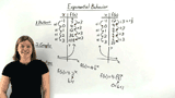 How Do You Identify Exponential Behavior from a Pattern in the Data?