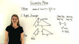 What is a Geometric Mean?